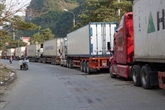 COVID-19 : des localités cherchent des mesures pour accélérer leurs exportations des produits