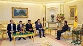 Vietnamiens et Brunéiens intensifient la cooparation anti-criminalité transnationale