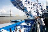 Le Vietnam peut détrôner la Thaïlande de son statut de 2e exportateur mondial de riz