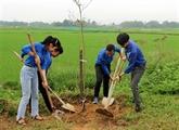 Lancement de la fête de plantation darbres dans différentes localités