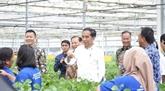 L'Indonésie inaugure une usine de fabrication de viscose