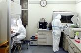 COVID-19 : 30 laboratoires capables d'effectuer des tests de dépistage