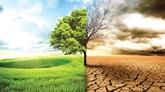 Vietnam - France : priorité à la coopération dans l'environnement