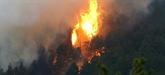 Incendie en Corse : des renforts attendus du continent