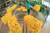 L'EVFTA stimulera la croissance du Vietnam à long terme
