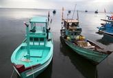 Kiên Giang s'efforce d'empêcher les activités de pêche illégale