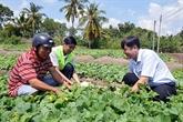 Hâu Giang : domaines prioritaires dans la mobilisation des ONG