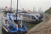 COVID-19 : Quang Ninh suspend les visites de la baie de Ha Long