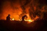 Indonésie : le gouvernement crée des pluies artificielles pour prévenir les incendies de forêt