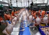 Préparatifs en cours pour exporter de la viande de poulet vers la Russie