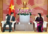 Des dirigeants vietnamiens reçoivent l'ambassadeur japonais sortant