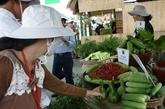 La production agricole à Hô Chi Minh-Ville en hausse