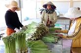 Promouvoir les exportations agricoles vietnamiennes vers l'Algerie