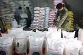 Le Vietnam suspend ses exportations de riz pour garantir la sécurité alimentaire