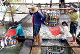 Chute de plus de 35% des exportations nationales de produits aquatiques