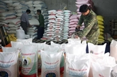 Les exportations vietnamiennes vers l'Algérie en légère hausse