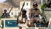 Premiers cessez-le-feu dans le monde après un appel de l'ONU