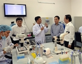 Trois universités vietnamiennes dans le classement mondial