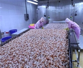 Le secteur agricole connaît un excédent commercial au premier trimestre