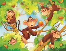Légende du singe aux fesses rouges