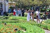 Des touristes étrangers se confinent à Dà Nang