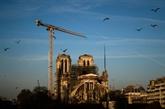 Notre-Dame : un an après l'incendie, un chantier en sommeil