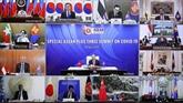 Les pays de l'ASEAN + 3 discutent de mesures spécifiques contre le COVID-19