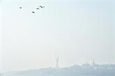 Kiev dans une épaisse fumée, record de pollution