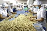Nikkei Asian Review : le Vietnam demeure le