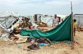 Yémen : sept morts dans des inondations, craintes du coronavirus