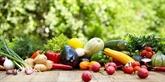 Lancement d'un concours d'éloquence sur l'hygiène alimentaire en anglais
