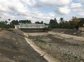 La sécheresse et la salinisation affectent la province de Tiên Giang