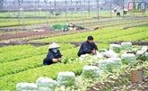 Publication du Livre Blanc des coopératives du Vietnam 2020