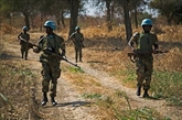Abyei : le Vietnam soutient Soudan et Soudan du Sud pour une résolution pacifique