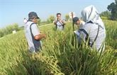 Le gouvernement indonésien vient en aide aux agriculteurs