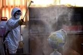 Indonésie : le taux de mortalité atteint les 10%, un des plus élevés au monde