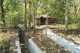 Tây Ninh : la forêt de Chàng Riêc et le Parc national Lo Go - Xa Mat se fusionnent