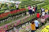 Le village fleuri de Sa Dec sera transformé en centre culturel touristique
