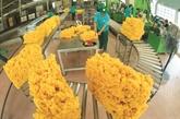 Coronavirus  : les entreprises exportatrices sous forte pression