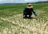 Le Vietnam s'efforce à utiliser durablement les ressources en eau du Mékong