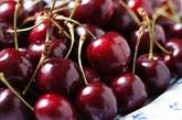 Les États-Unis, 1er fournisseur des fruits et légumes du Vietnam
