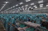 Les exportations ont atteint 8,22 milliards d'USD au cours de la première moitié de mai