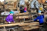 Les exportations de bois en hausse grâce aux nouveaux marchés