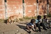 Pandémie : 86 millions d'enfants supplémentaires menacés par la pauvreté