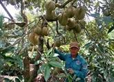 La polyculture, une réponse aux aléas du changement climatique