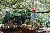 Premier trimestre : le Vietnam affiche un excédent commercial avec l'Inde