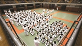 Le Kodokan, une