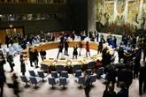 Coup d'arrêt américain à une résolution franco-tunisienne à l'ONU