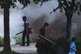 Singapour enregistre un record du nombre de cas de dengue