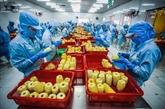 Le Vietnam se prépare à la mise en œuvre de l'EVFTA
